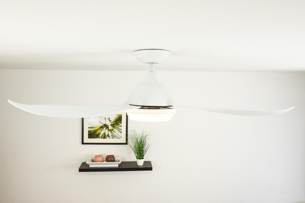 Raja DC ceiling fan